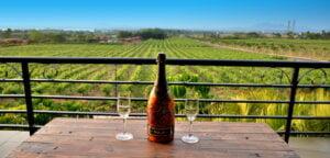 Sula Wines - Best in Nashik