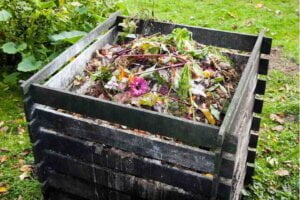 Use natural fertilizer